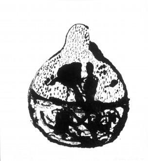 maceratio01
